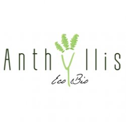Anthyllis