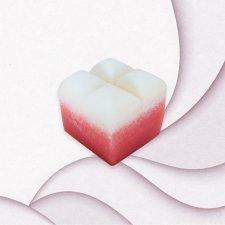 Soap sponge Pomegranate & Cinnamon