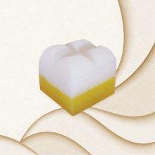 Soap sponge Earth & Fire