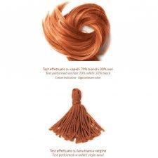 Henné Red Iran n°3 Phitofilos