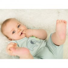 Baby t-shirt and short Elephant in organic cotton Sense Organics