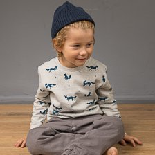 Boy sweater Fox in organic cotton Sense Organics