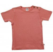 Maglietta T-shirt 100% cotone biologico Albicocca