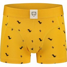 Perfect Fit DINO Kids boxer in organic cotton