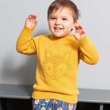 Little cub jumper in organic cotton for children