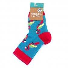 Socks in fair trade organic cotton Parrots