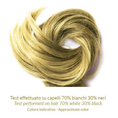 Alcanna Powder Natural Hair Dye Phitofilos