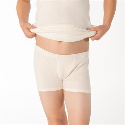 Boys shorts in organic cotton