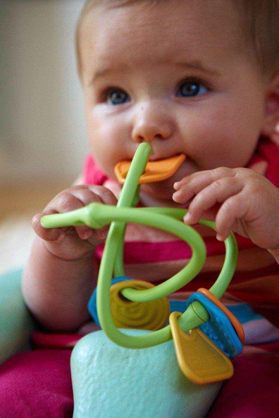 Green Toys Dentaruolo Tridimensionale