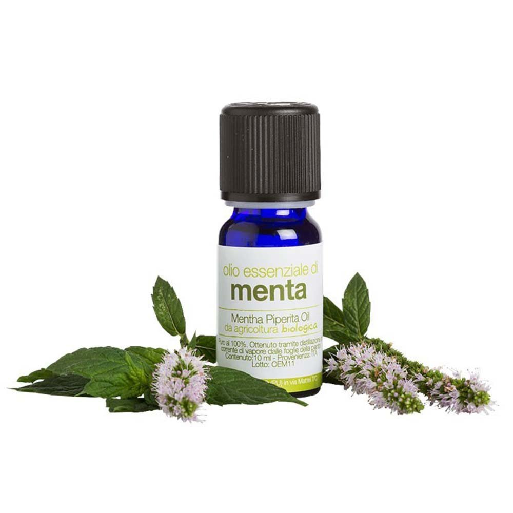 Organic Mint Oil Essential