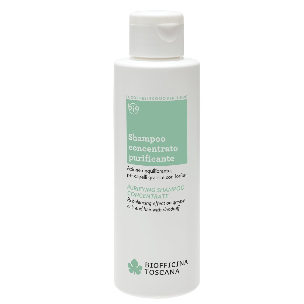 Purifying shampoo concentrate