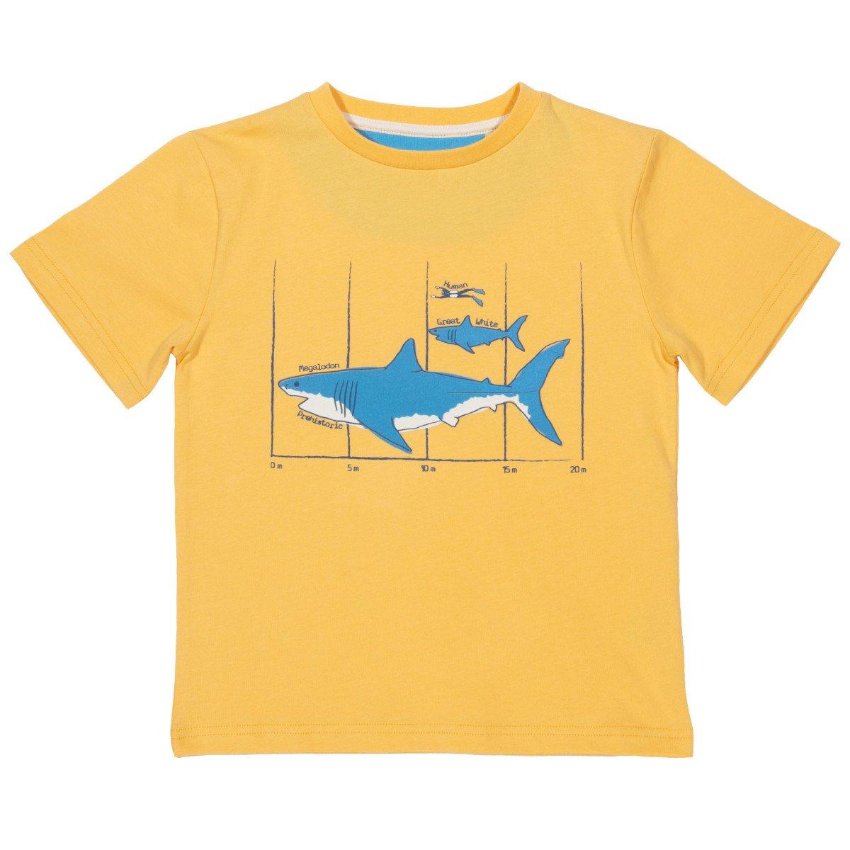 T-shirt Megalodonte in cotone biologico
